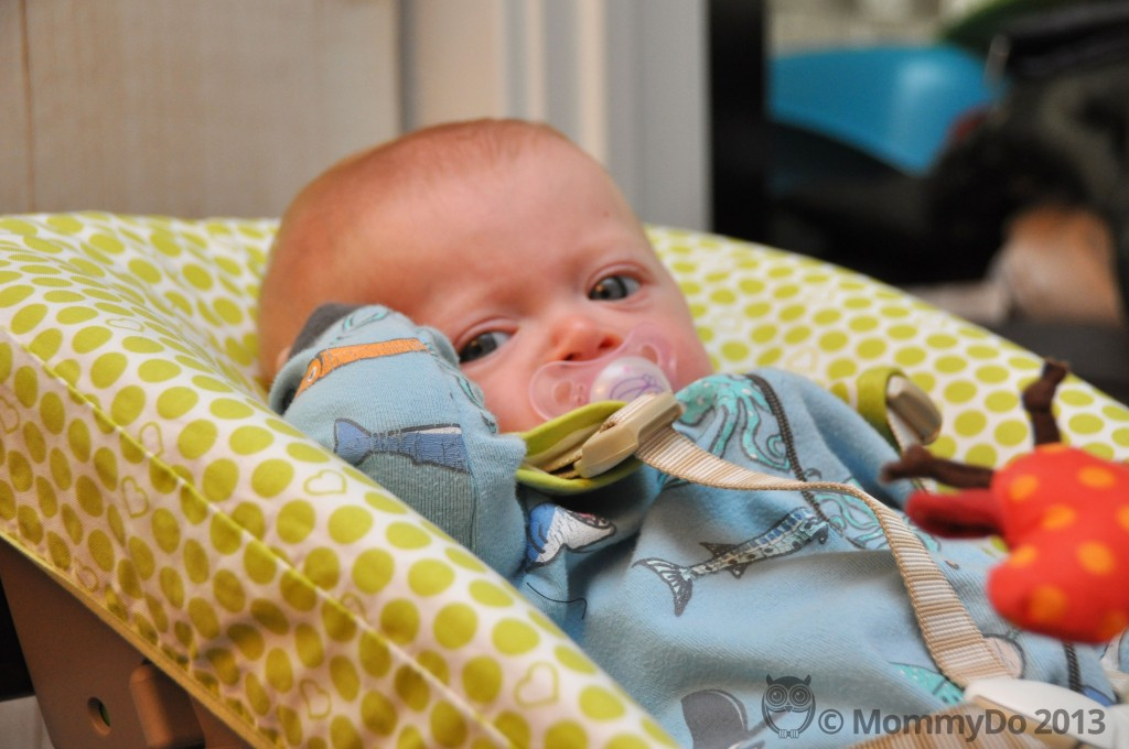 Stokke newborn set review mommydo